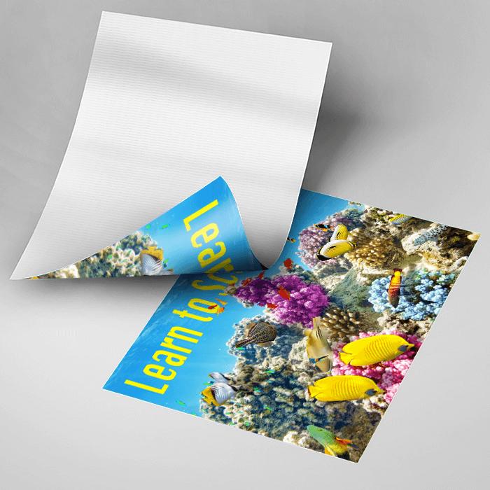 Waterproof Poster - Reef