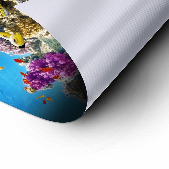 Waterproof Poster - Rolled - Reef